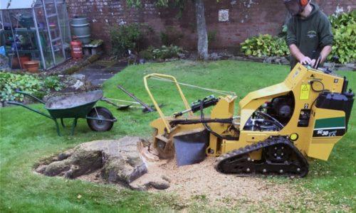 stump cutting services
